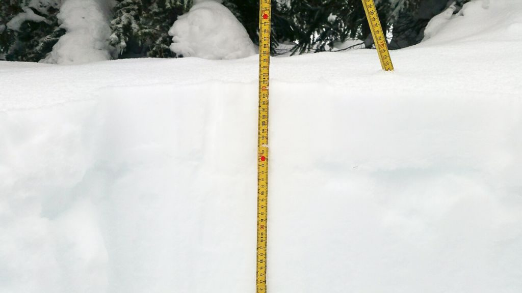 Valemount is sporting a healthy 110cm base, with more to come hopefully this weekend.