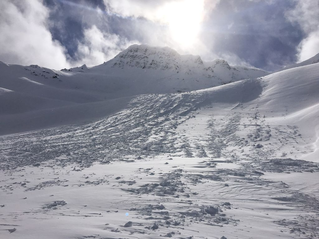 Evidence of wind and numerous small, natural surface avalanches could be spotted throughout the alpine on Sunday.