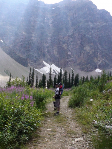 Summer Alpine