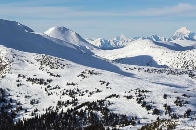 Clemina Creek Ride Guide – Valemount, BC