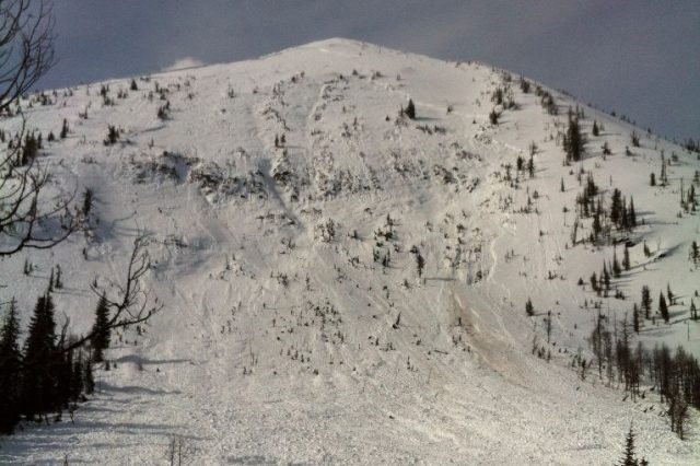 So, You've Been Meaning to Take an Avalanche Course…