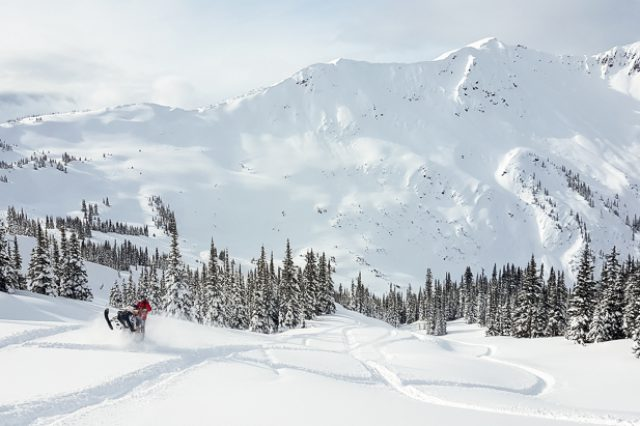 Conditions Report: Valemount Feb 23, 2017