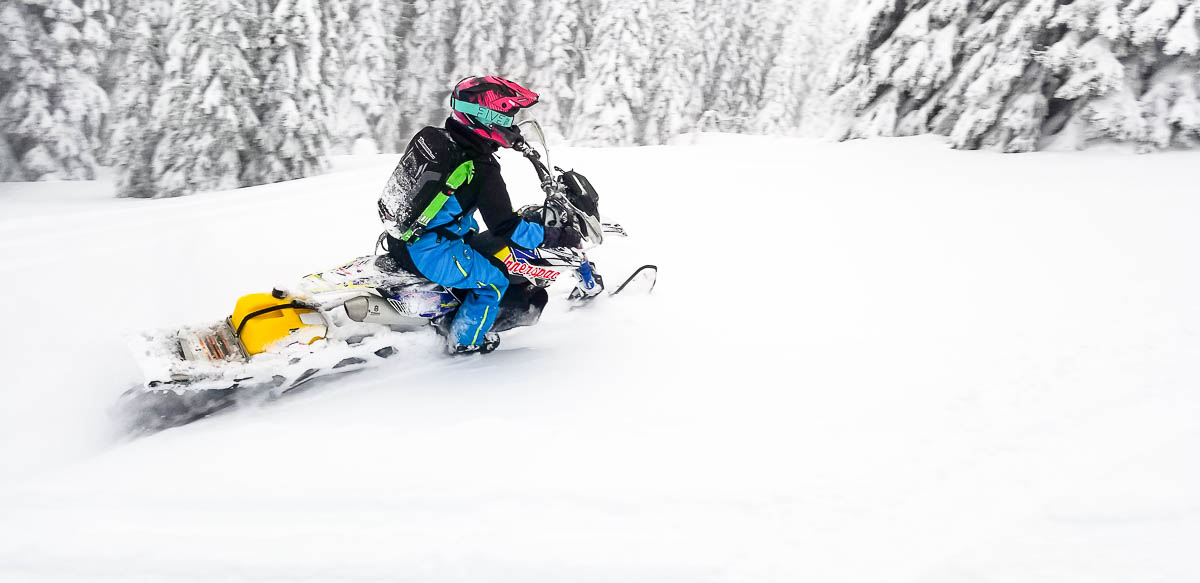509 Allied Review