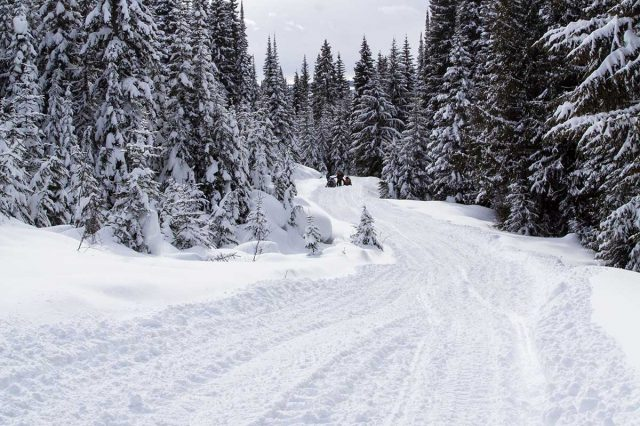 Fernie Snowmobile Area Access Trail Closed without Notice