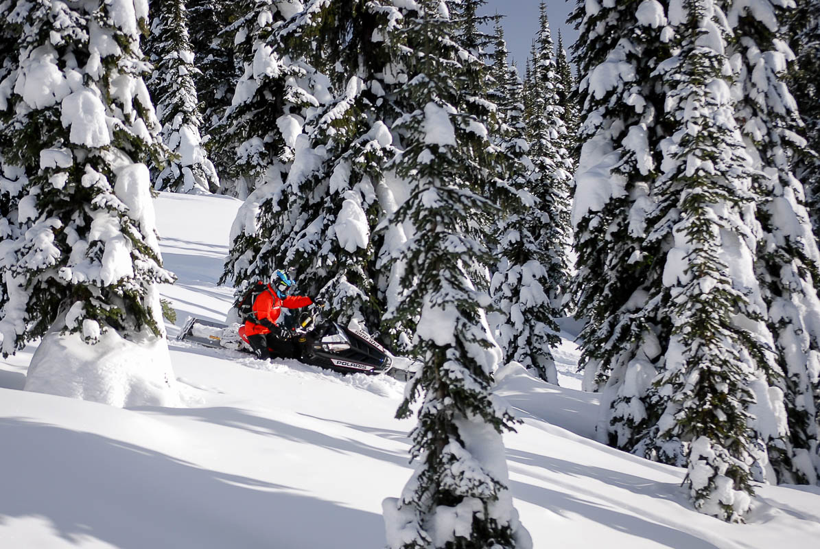 Snowmobiling in the southeast Kootenay