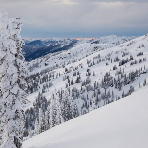 Avalanche Research Program Seeks Feedback from Backcountry Users of All Experience Levels