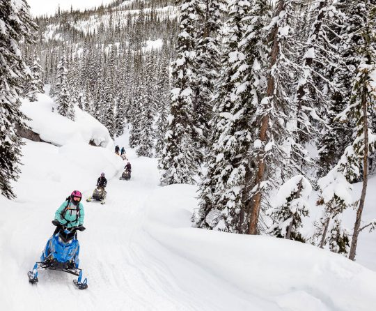 Industry Leaders Work to Establish Association of Snowmobile Guides in BC