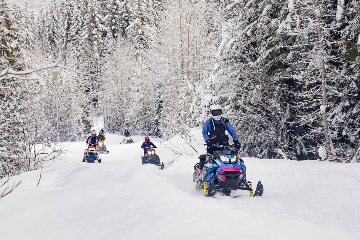 Snowmobile Sales 2019 2