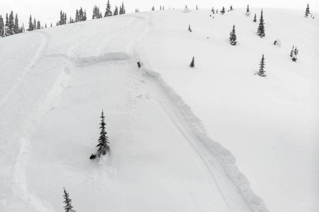 Avalanche Canada Expands  Service, Including Forecasts for Vancouver Island