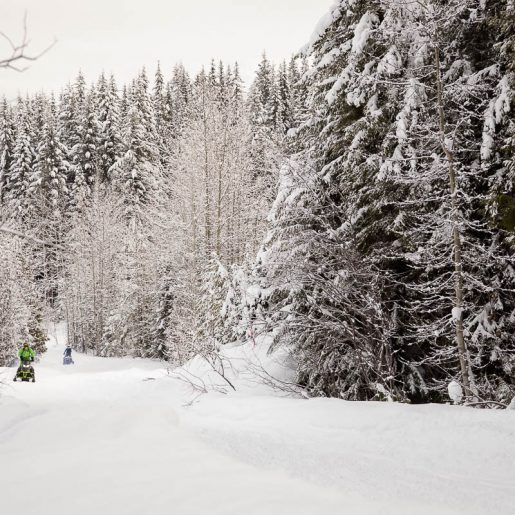 Local Governments Vote to Protect Recreation In BC